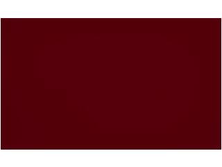 Logo9-shoesbar