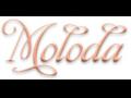 логое