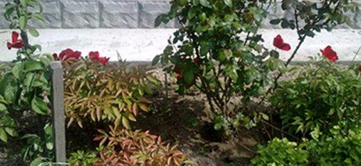 От 3 до 11 дней отдыха в пансионате «Усадьба у моря» в  Геническе