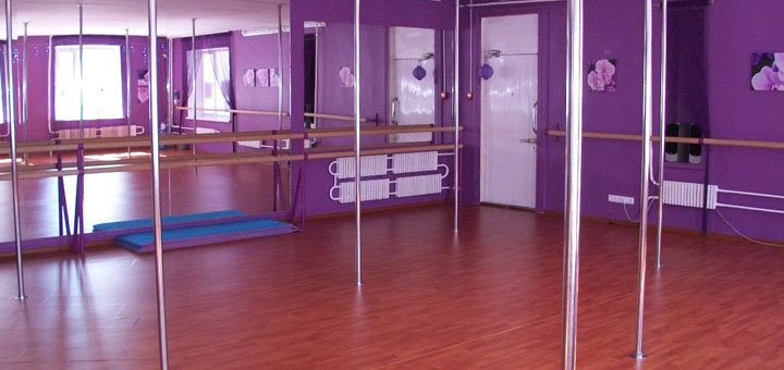 До 3 месяцев занятий Stretching, Йога, Fitness, Twerk, Contemperary в студии «Фрейя»