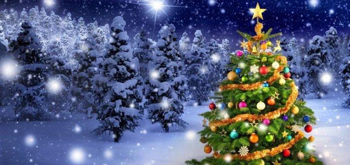 Входной билет на новогоднюю вечеринку «Зимняя сказка» в ресторане «Кухня на Богатирській»