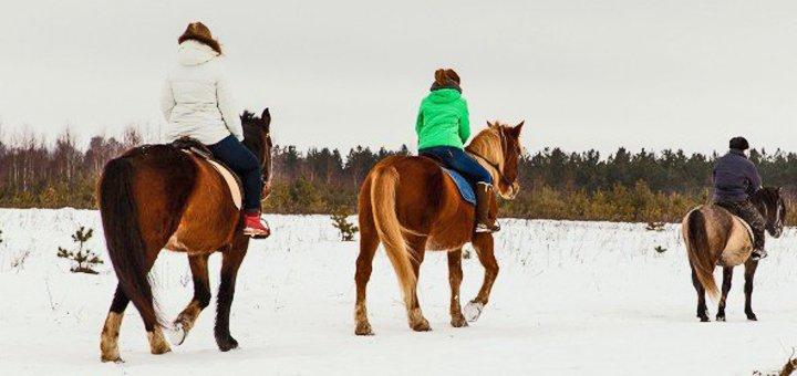 До двух часов прогулки на пони или лошади для взрослых и детей в конном дворе «Верхом»