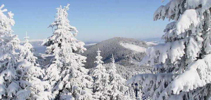 От 3 дней зимнего отдыха с питанием в отеле «Карпатські Роси» в Яремче