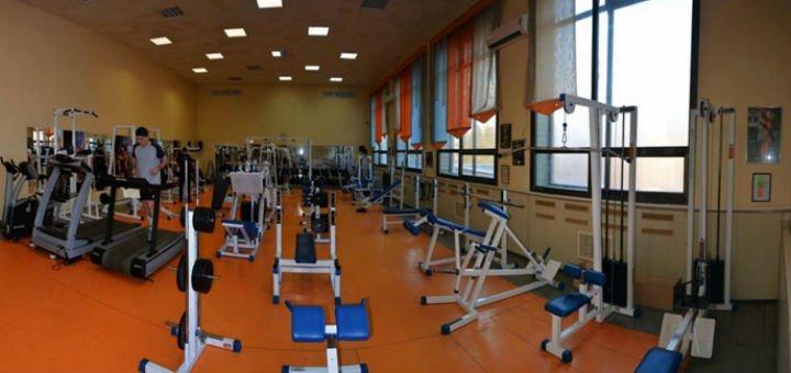 До 3 месяцев посещения тренажерного зала в сети спортивных клубов «Викинг»
