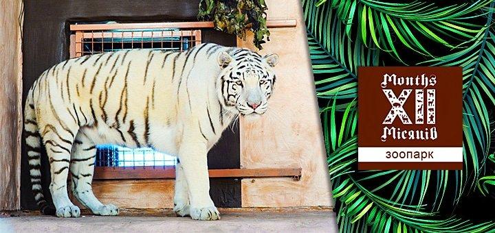 Новый осенне-зимний сезон развлечений в зоопарке«XII Месяцев»: цирк шапито и представление на льду с участием животных!
