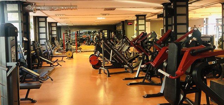 До 12 месяцев посещения спортивного клуба «Olympia Sport»