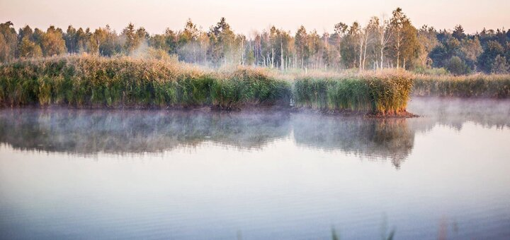 Рыбалка с арендой беседки и мангала на базе отдыха «Рибалочна» под Киевом