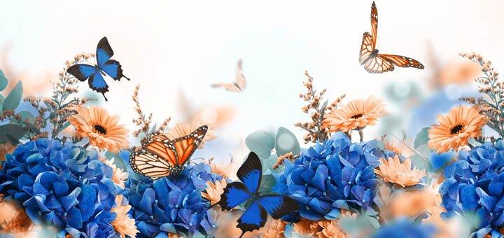 Скидка 50% на два билета на выставку живых бабочек и других насекомых в Каменском