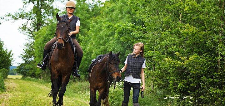 Скидка до 42% на прогулку на лошаде с обучением и сопровождением тренера от «ЦарSky»