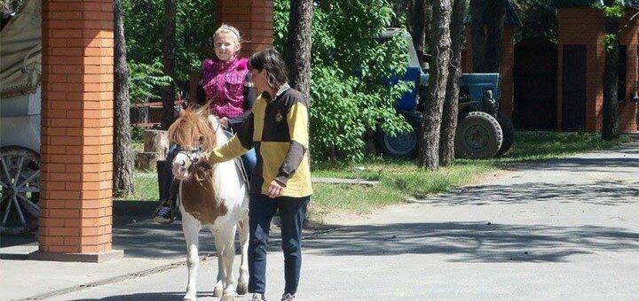 От 2 дней с трехразовым питанием и катанием на лошадях в коттеджах «Северный лес» под Конотопом